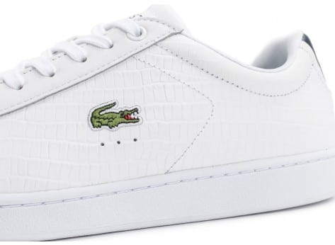 Chaussures Lacoste Carnaby Evo Croc blanche bleu vue dessus