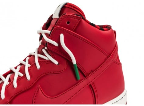 Chaussures Nike Dunk High Ultra Rain rouge vue dessus