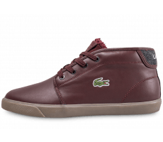 Chaussures Lacoste Amphtill marron